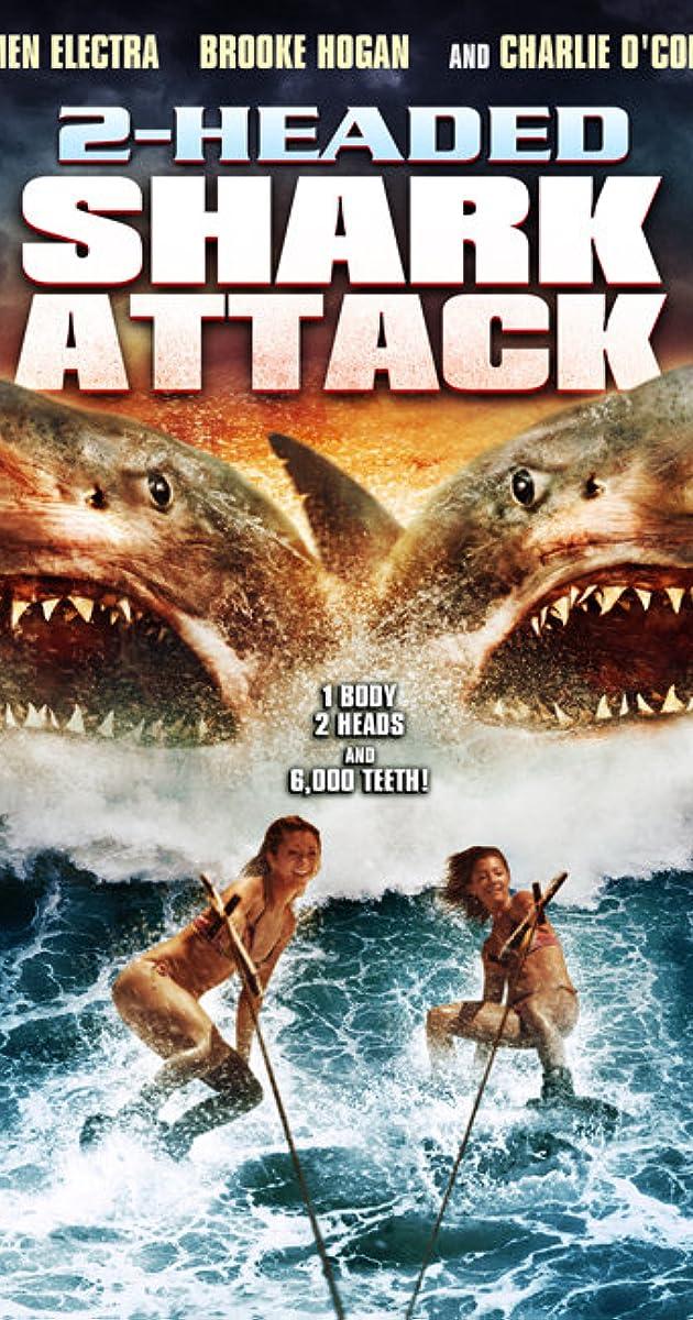 sharks silencieux et mortels