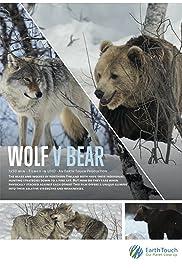 Wolf vs Bear (2018) 1080p
