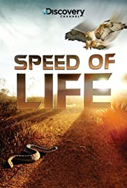 Speed of Life (2010) 720p