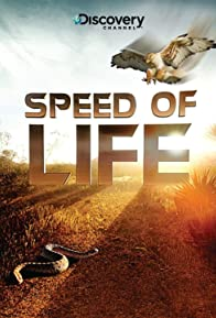 Primary photo for Speed of Life