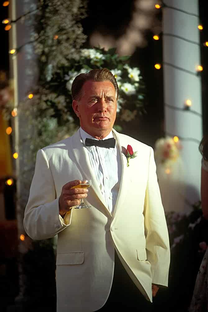 Martin Sheen in Catch Me If You Can (2002)