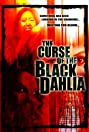 The Curse of the Black Dahlia (2007) Poster