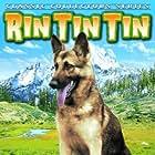 Rin Tin Tin Jr. in Caryl of the Mountains (1936)