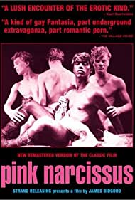 Pink Narcissus (1974) Poster - Movie Forum, Cast, Reviews