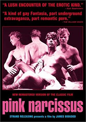 Pink Narcissus 1971 11