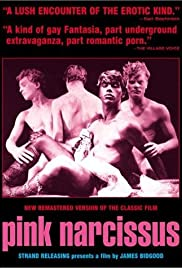 Pink Narcissus (1971) Poster - Movie Forum, Cast, Reviews