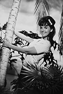 Dawn Wells bonanza