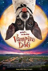 Primary photo for Vampire Dog