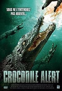 Primary photo for Crocodile Alert