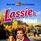 Hills of Home (1948)