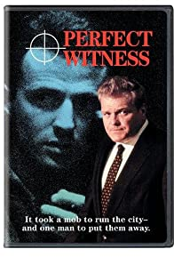 Primary photo for Perfect Witness