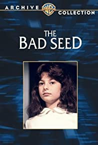 Primary photo for The Bad Seed