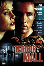 Terror in the Mall Poster