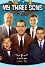 My Three Sons (1960) Poster