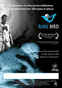 Google movies download Rare Bird by [480x800]