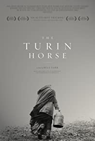 Primary photo for The Turin Horse