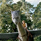 Rachel Weisz and Ed Speleers in Eragon (2006)