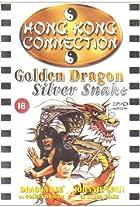 Golden Dragon Silver Snake