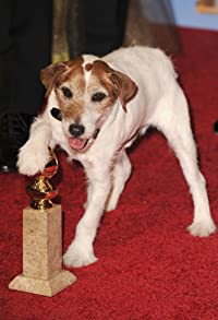 Primary photo for Uggie