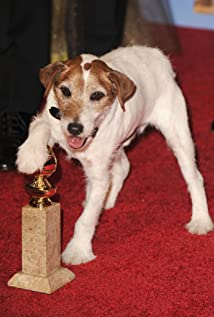 Uggie Picture