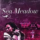 Sea Meadow (2011)