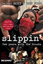 Slippin': Ten Years with the Bloods (2005) Poster