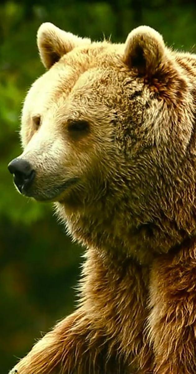 Uncut bear men