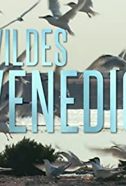 Wildes Venedig Poster