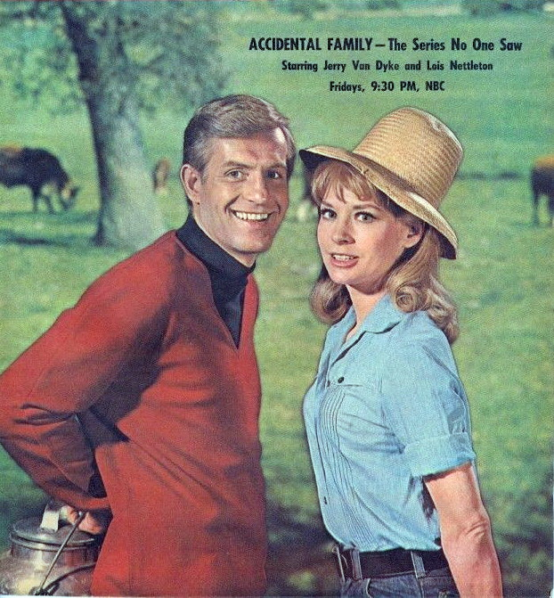 Image result for images of jerry van dyke accidental family
