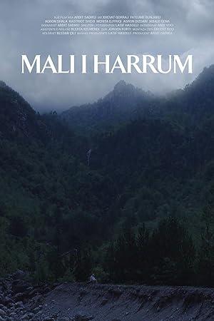 Where to stream The Forgotten Mountain