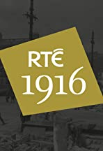 1916: Every County Has a Story