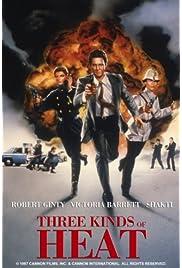 Three Kinds of Heat (1988) film en francais gratuit