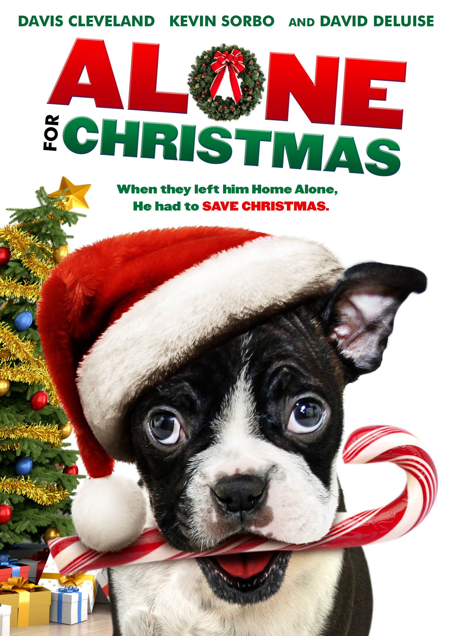 Alone For Christmas Video 2013 Imdb