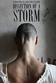 Dissection of a Storm Poster