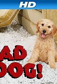 Bad Dog! Poster