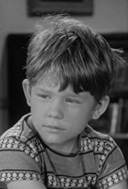 The Andy Griffith Show Bringing Up Opie Tv Episode 1961 Imdb