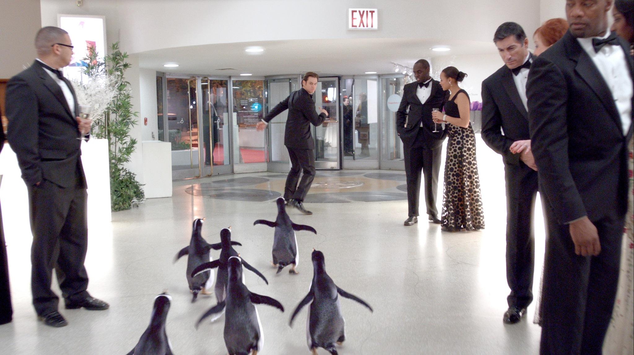 POPPER SES ET DVDRIP PINGOUINS TÉLÉCHARGER M