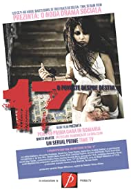 17 - o poveste despre destin (2008)