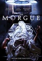 The Morgue