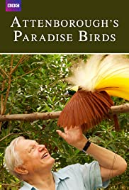 Attenborough's Paradise Birds (2015) 720p
