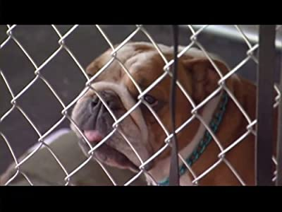 New movie full hd download 2018 Pups on Parole and Eton \u0026 Dolly [720pixels]