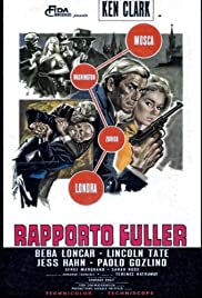 Rapporto Fuller, base Stoccolma Poster