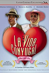 Primary photo for La vida conyugal