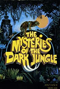 Primary photo for I misteri della giungla nera
