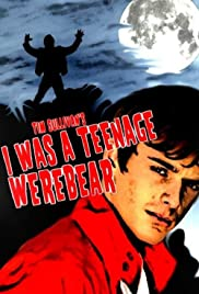 I Was a Teenage Werebear Poster