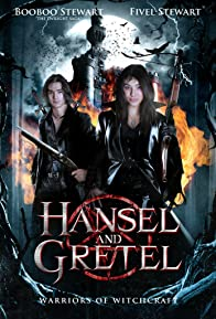 Primary photo for Hansel & Gretel: Warriors of Witchcraft