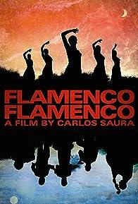 Primary photo for Flamenco Flamenco