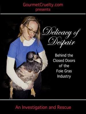 Delicacy of Despair