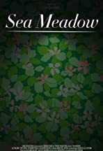 Sea Meadow
