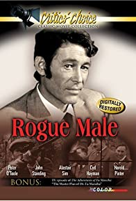 Primary photo for Rogue Male